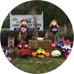 agripro lawns lawn-decor